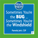 'Sometimes You're the Bug... Sometimes You're the Windshield' audio CD